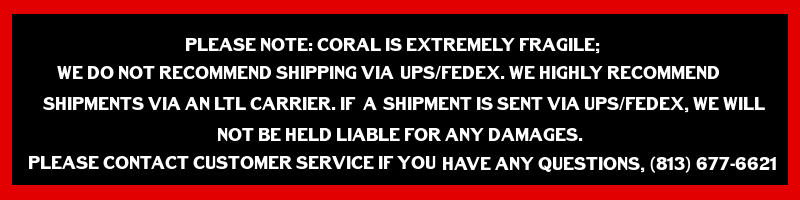 coral-warning.png
